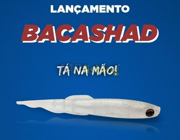 ISCA NONSTER3X BACASHAD